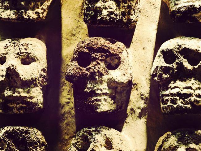 Skulls Museo Del Templo Mayor