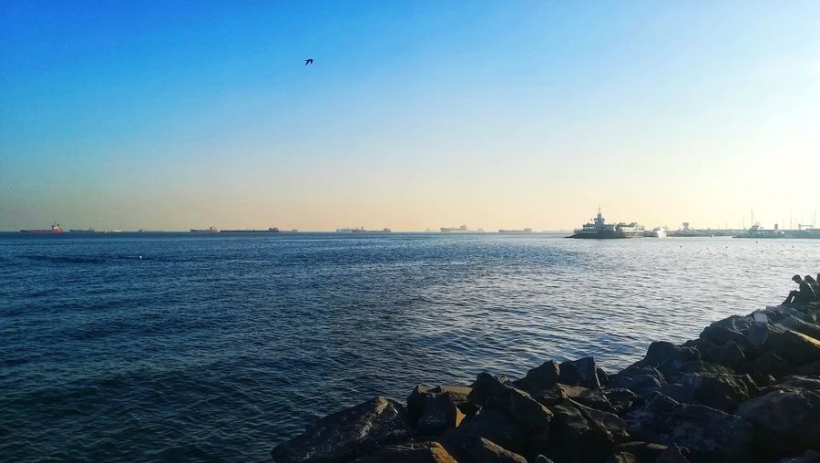 EyeEm Best Shots EyeEm Nature Lover Nature Blue Sky Sea Water Nautical Vessel Sea Industry Clear Sky Offshore Platform Sailing Ship Harbor Business Finance And Industry Sunset Container Ship Sailboat Industrial Ship Water Vehicle Nautical Equipment Lighthouse