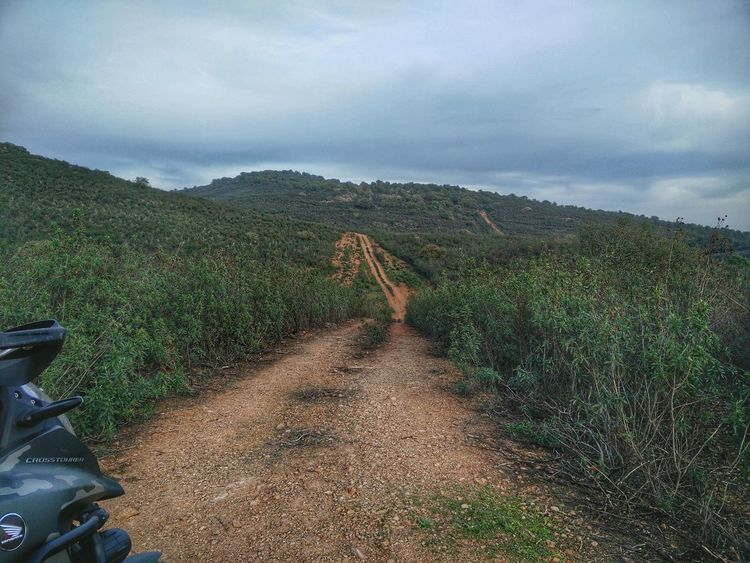 Adventure day! Adventure Is Out There Adventure Time Motorcycle Nature Photography Naturelovers Alentejo,Portugal Off-Road