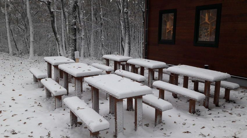 Cold Temperature Forest No People Snow Snow ❄ Snowing Table White Color Winter Wintertime Wintertime ⛄ Wood - Material