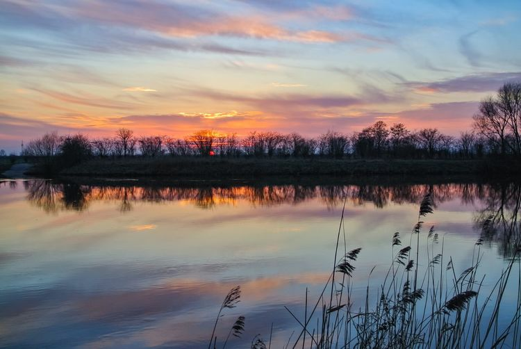 Sunset with clouds Landschaft River Panorama Clouds Cloud Sun Landscape Sunset Reflection Sky Cloud - Sky Tree Nature Water Lake Beauty In Nature Outdoors Day No People