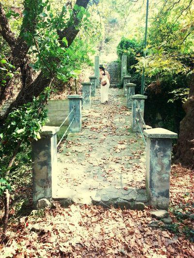 Bir yol seç. Yol Doğa