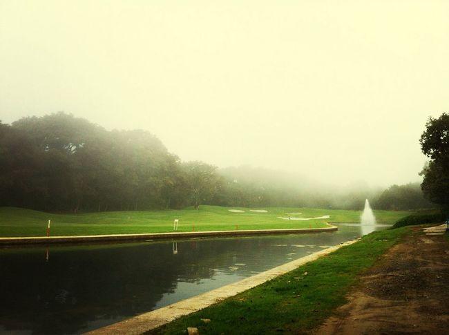 Golfing Golfing