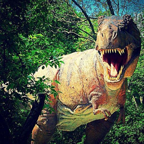 кукуепта Dino Afraid