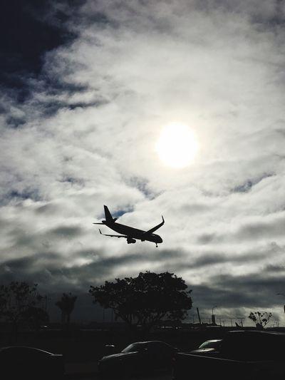Aviation Aviationgeek Airplane Cloud - Sky Lifestyles