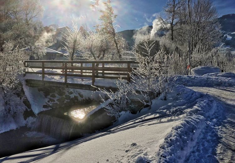 Cold Winter ❄⛄ Cold Temperature Winter Snow Tree Weather Nature Sunlight Beauty In Nature No People Tranquil Scene Happy Weekend ✌️ Happy Winter Day