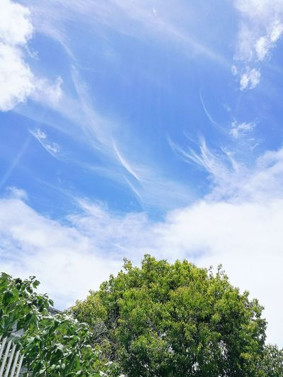 Sky view ❤ Skypornaddict Mauritius