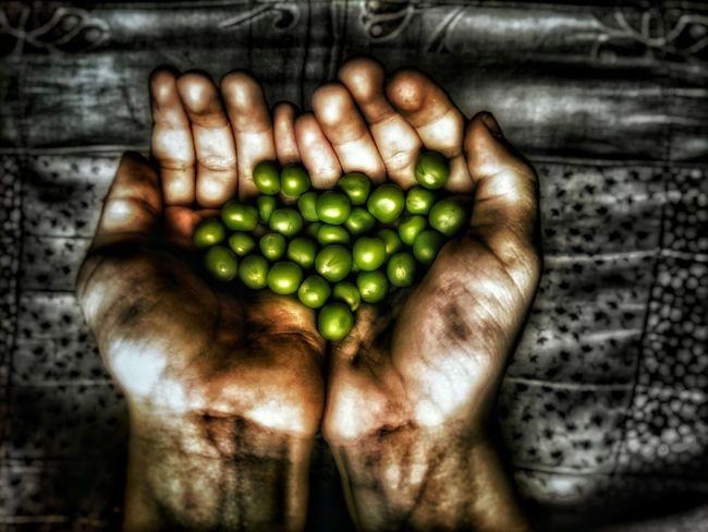 Hands Poorness Pees Black Green