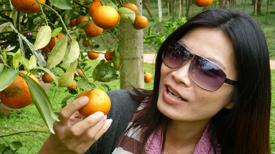 Close-up of mature woman holding orange on tree