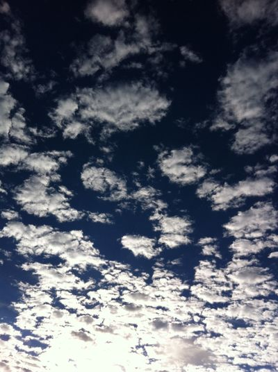 Backgrounds Beauty In Nature Blue Cloud - Sky Cloudscape Day Full Frame Heaven Idyllic Low Angle View Meteorology Nature No People Outdoors Scenics - Nature Sky Sunlight Tranquil Scene Tranquility White Color