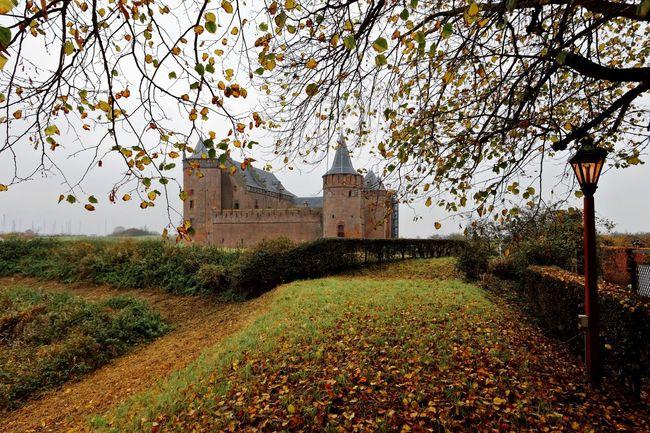 Castle Muiderslot Autumn Walking Around