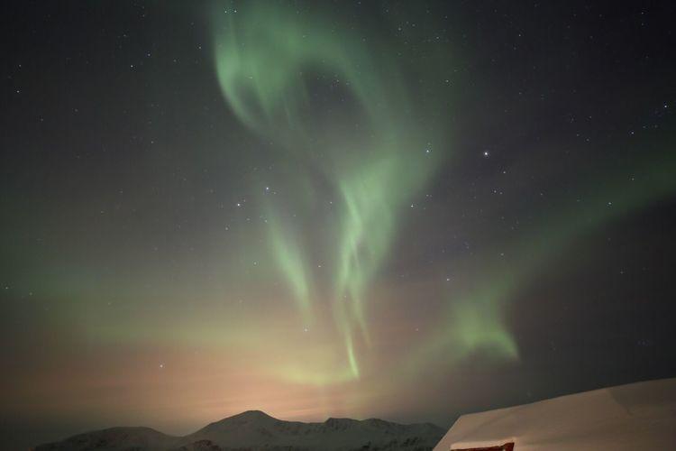 Norway Lyngseidet Tromso Aurora Northern Light