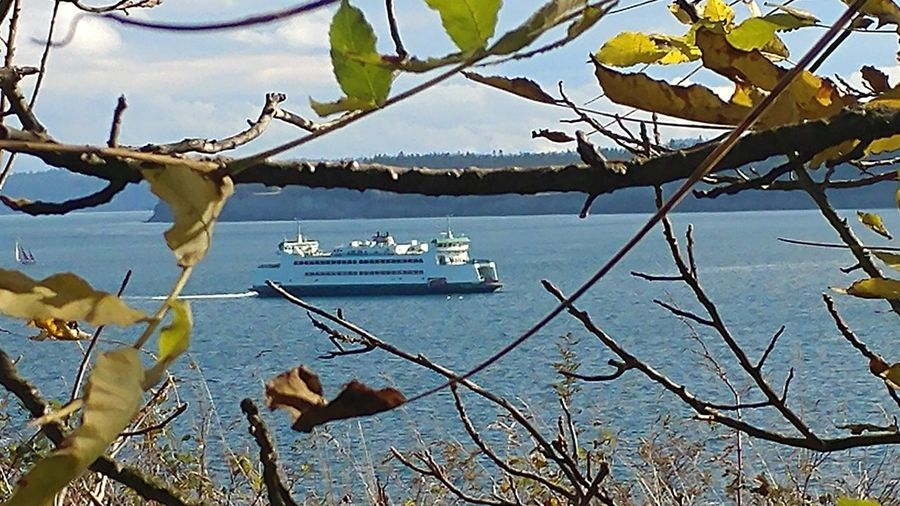 Ferry Ferryboat