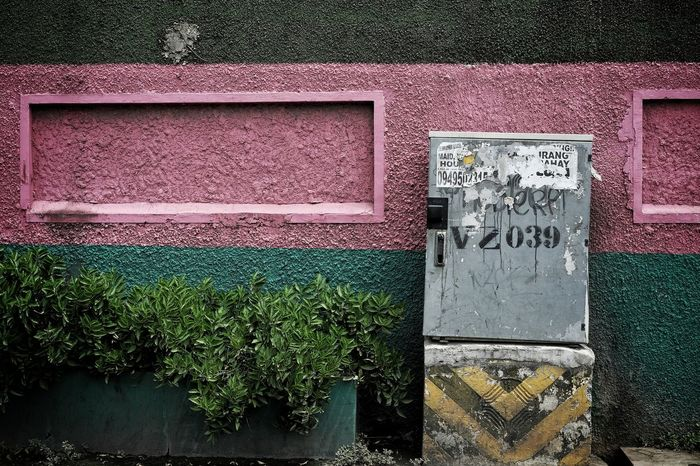 Day Outdoors No People Communication Close-up Pink Green Wall Street Wall Eyeem Philippines EyeEm Selects