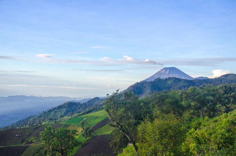 Mt. Semeru peak