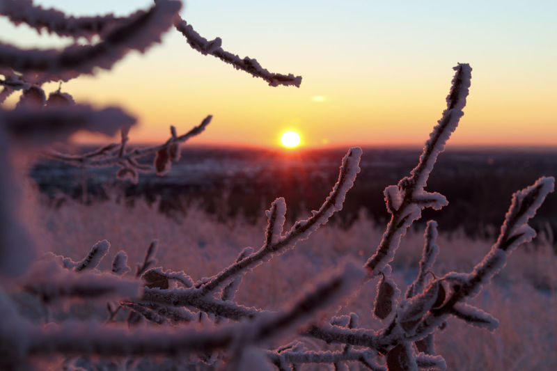 Close-up of snow on land against sky during sunset