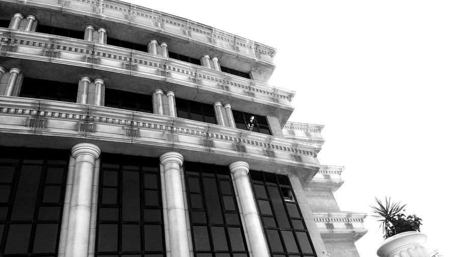 MSA University, Egypt Architecture Built Structure Building Exterior Low Angle View No People Architectural Column Blackandwhite Campus Life MSA University University Campus Egypt Architecture The Architect - 2017 EyeEm Awards
