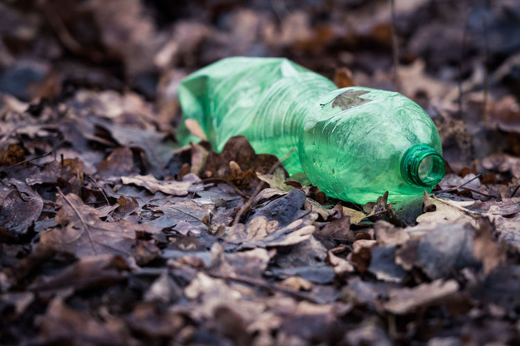 Careless Close-up Day Forest Green Color Leaf Leaves Nature No People Outdoors Plastic Bottle Plastic Waste Polution Polution Is All Around The World Sad