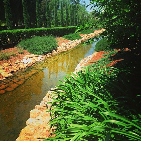 A River of Life Eternal Garden Stream Naturehippys Nature_perfection Natureonly Hubnature Naturestyles_gf Nature_lovers Nothingisordinary Naturepolis Motherearth Naturewhisperers Nature_obsession Nature_specialist