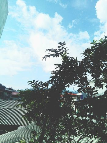 Blue sky ☁☁☁