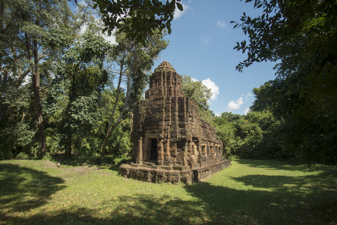 tree, built structure, architecture, history, day, old ruin, shadow, building exterior, religion, place of worship, sunlight, spirituality, ancient, grass, travel destinations, no people, outdoors, ancient civilization, growth, sky, nature