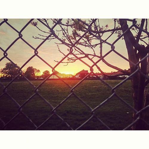 Sunset IPSContest Love Tweegram Instagood photooftheday iphonesia instamood igers instagramhub picoftheday instadaily bestoftheday igdaily instagramers webstagram follow statigram life sun fence