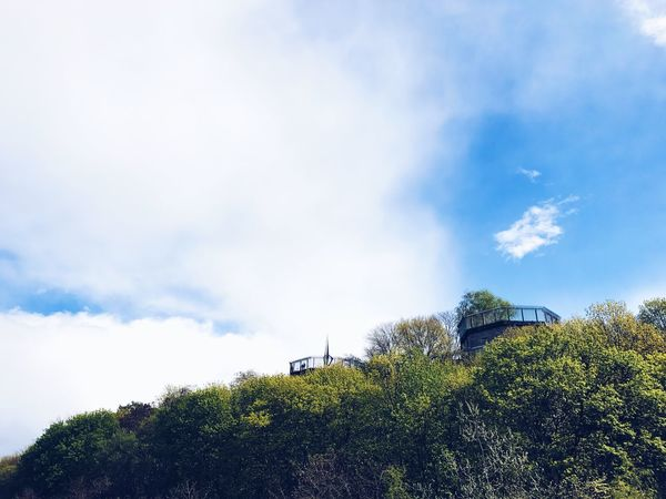 Sky Cloud - Sky Tree Day Low Angle View No People Nature Outdoors Beauty In Nature Built Structure Architecture WWll Spring Springtime Berlin Photography Berliner Ansichten Berlin Flakturm Bunker The Great Outdoors - 2017 EyeEm Awards