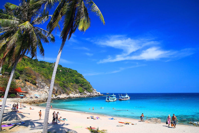 Beautiful Paradise Tropical Island, Koh Tao, Thailand Thailand Koh Tao, Thailand Beach Thailand Thailand Blue Sky Tree Water Sea Nautical Vessel Beach Swimming Blue Sand Summer Relaxation Coconut Palm Tree Island Palm Tree Coconut Lagoon