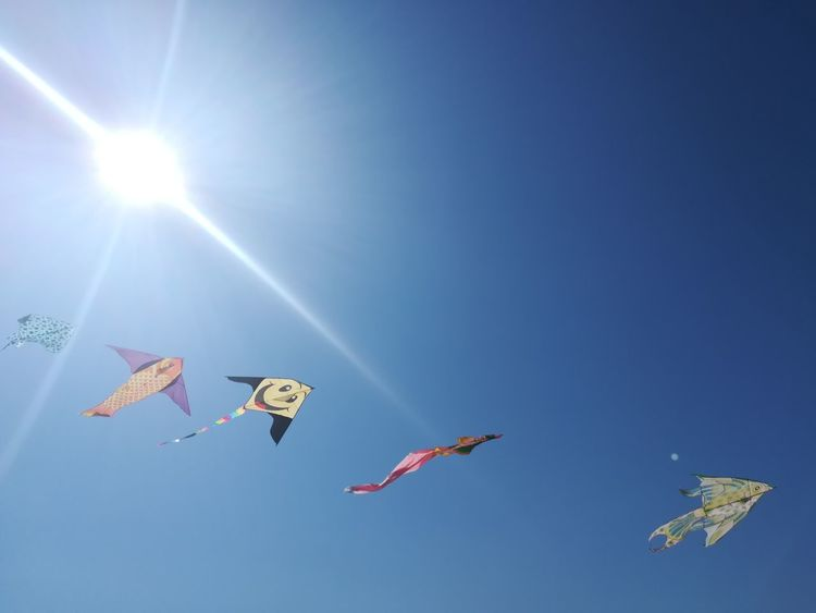 Kites In The Blue Sky Summer Clear Sky Sun Shimmer Smile Children's Kites Agitated In The Wind Kites Flying Kites In Motion Wind Flying Motion Mid-air Kite Kite - Toy Fluttering