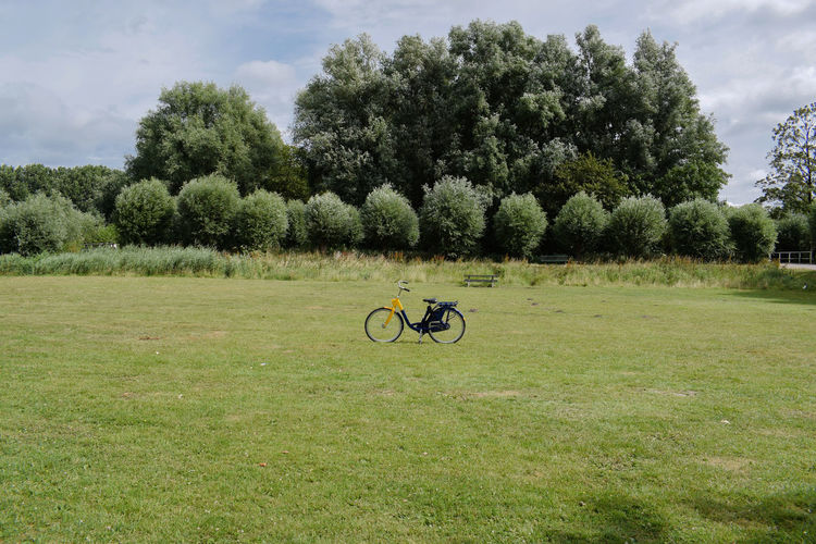 Summer in Netherlands Travel Backgrounds Bicycle Cloud - Sky Day Environment Explore Field Grass Green Color Growth Land Landscape Mode Of Transportation Nature No People Outdoors Plant Sky Summer Tranquil Scene Tranquility Transportation Tree Wallpaper