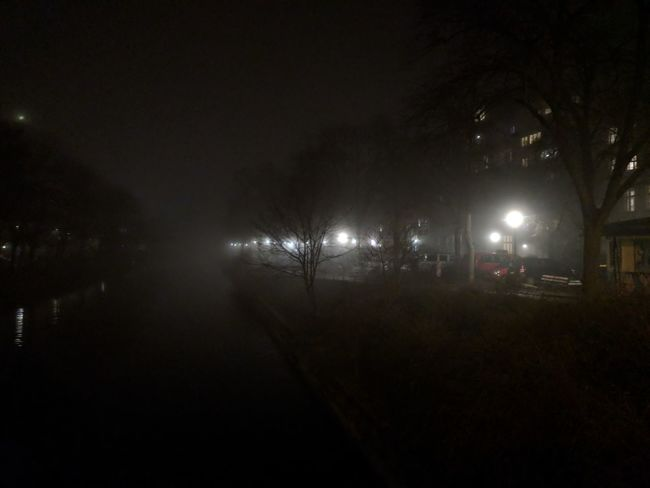 Fog lasted whole day yesterday. Fog Canal Water Reflection Night Illuminated No People Outdoors Tree Sky