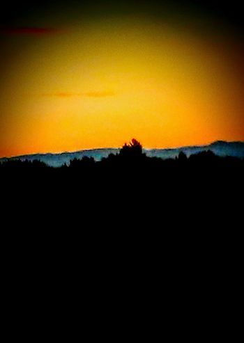 Hanging Out Check This Out Taking Photos Relaxing Enjoying Life Eyeemphotography I Took This Picture Wicked Awesome Oregonexplored Yamhill County Eye4photography  EyeEm Gallery Beauty In Nature 43golden Moment Sunrise_Collection Beautiful Morning Beautyineverything Sky On Fire Silhouettes Sunlit Beauty Effortless Beauty I ❤Oregon Willamette Valley Summer2016✨ Mountainscape