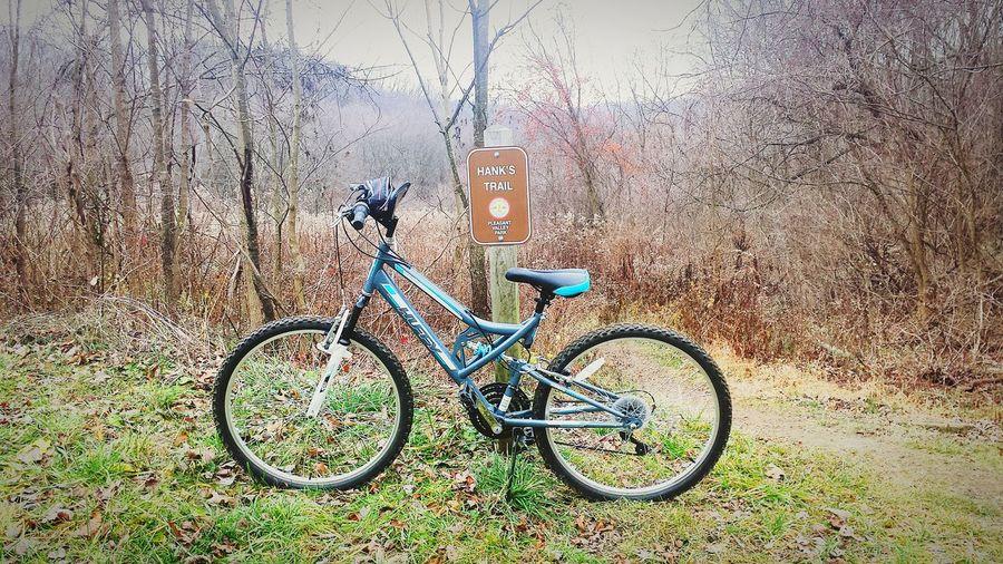 PVP, Hank's Trail Trail Nature Winter Outdoors Plants Biking Mountain Biking Mountain Bike Plesant Valley Park Hank's Trail Pennsylvania