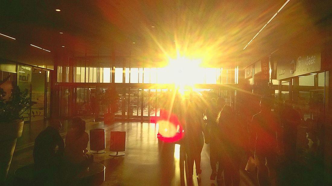 Sunlight Sunset People Day