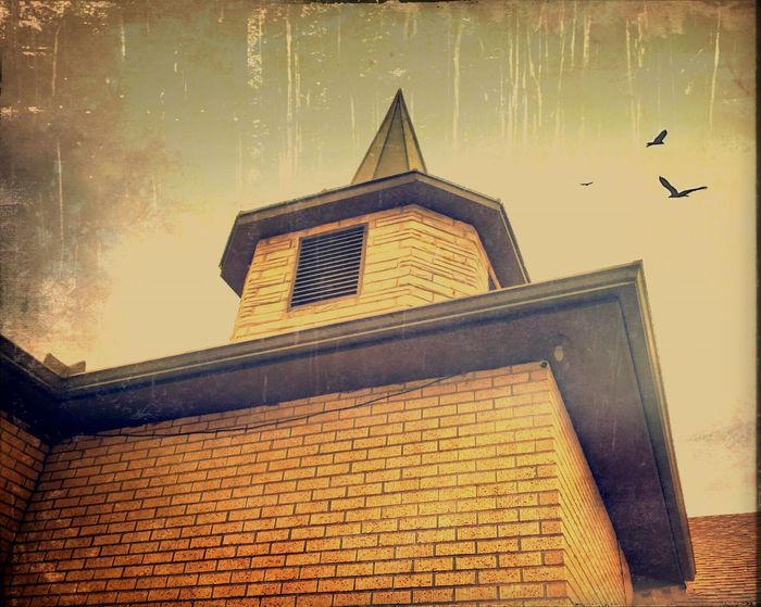 Steeple Church Architecture IPhoneography Iphone6 Birds