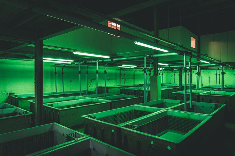 Fish processing facility