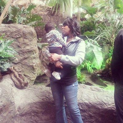 Maliyah looking....Highlights of Dallas Aquarium~♡