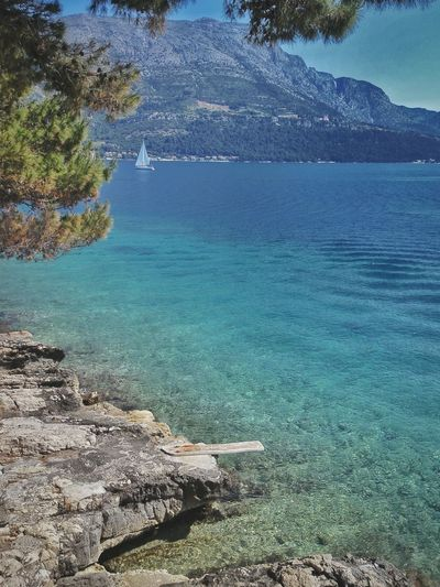 Made it to the Island of Korčula Beautiful Nature Sunny Day Travel Nobody