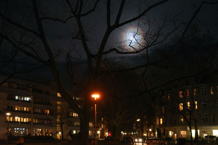 Illuminated street light and buildings against sky at night