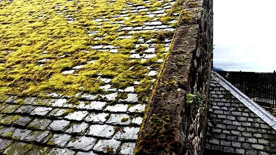 Architecture Roof Rural Scene Wet Tiled Roof  Tiles Textures