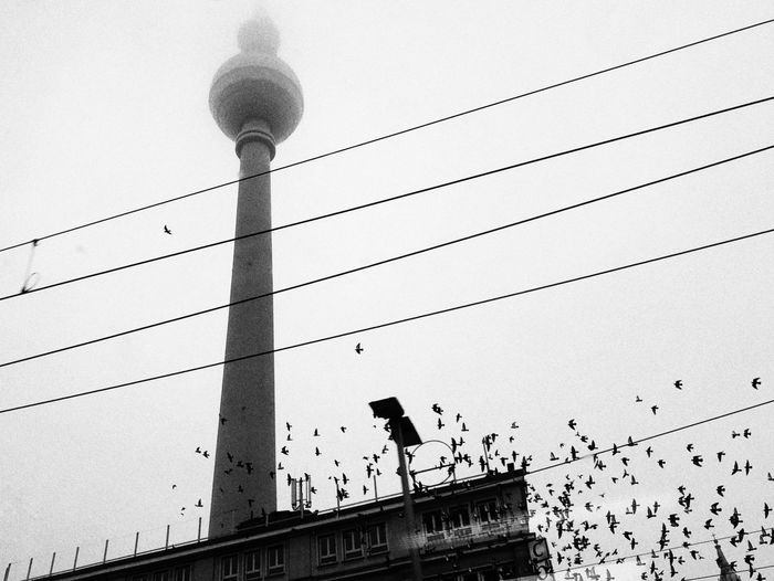 Blackandwhite Travel Berlin Tower Communications Tower Communications Berlin Architecture Built Structure Low Angle View Building Exterior Sky Day Nature No People Outdoors Tower Street Light Tall - High Bird City Street Electricity  Connection Building Technology