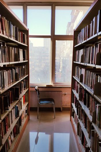 MORNING Shelf Bookshelf Education Indoors  Book Publication Library Day Learning Window No People