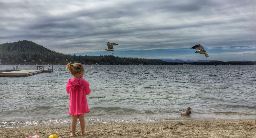 spent the day at the beach with my sister and my adorable niece and nephew. She was obsessed with feeding the birds and in awe of how close they would come for a piece of bread. Loon Lake USA Duck Beach Hanging Out Ladyphotographerofthemonth What I Value