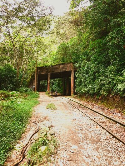 Built Structure Day Outdoors Green Color Nature Peru Miles Away Travel Destinations Railway Railroad Railroad Track