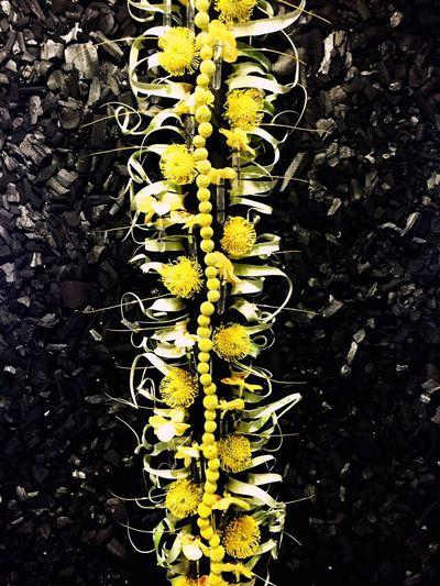 Tableau floral dont jai adorer travailler sur ce projet ! 😍☺️☺️ Charbon Fleuriste Flowers Fleurs Jaunes Noir Orchidee