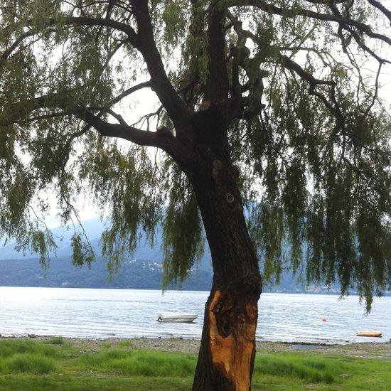 Schön 😍 Pretty Sommer Beautiful Holidays