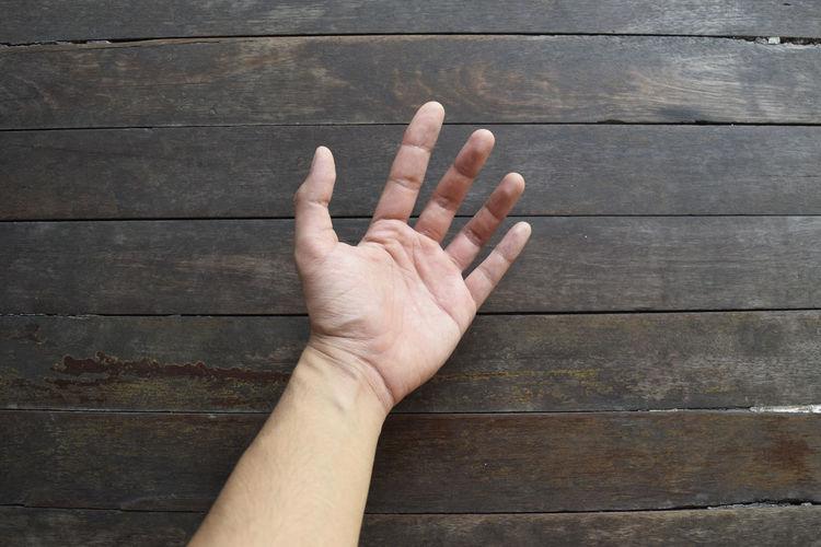 Open palm hand