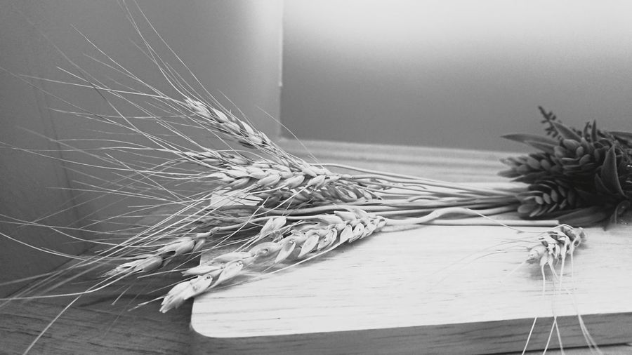 Close-up of rope on table at home