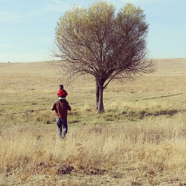 Father Son Fatherandson Tree autumn sonbahar ağaç baba oğul