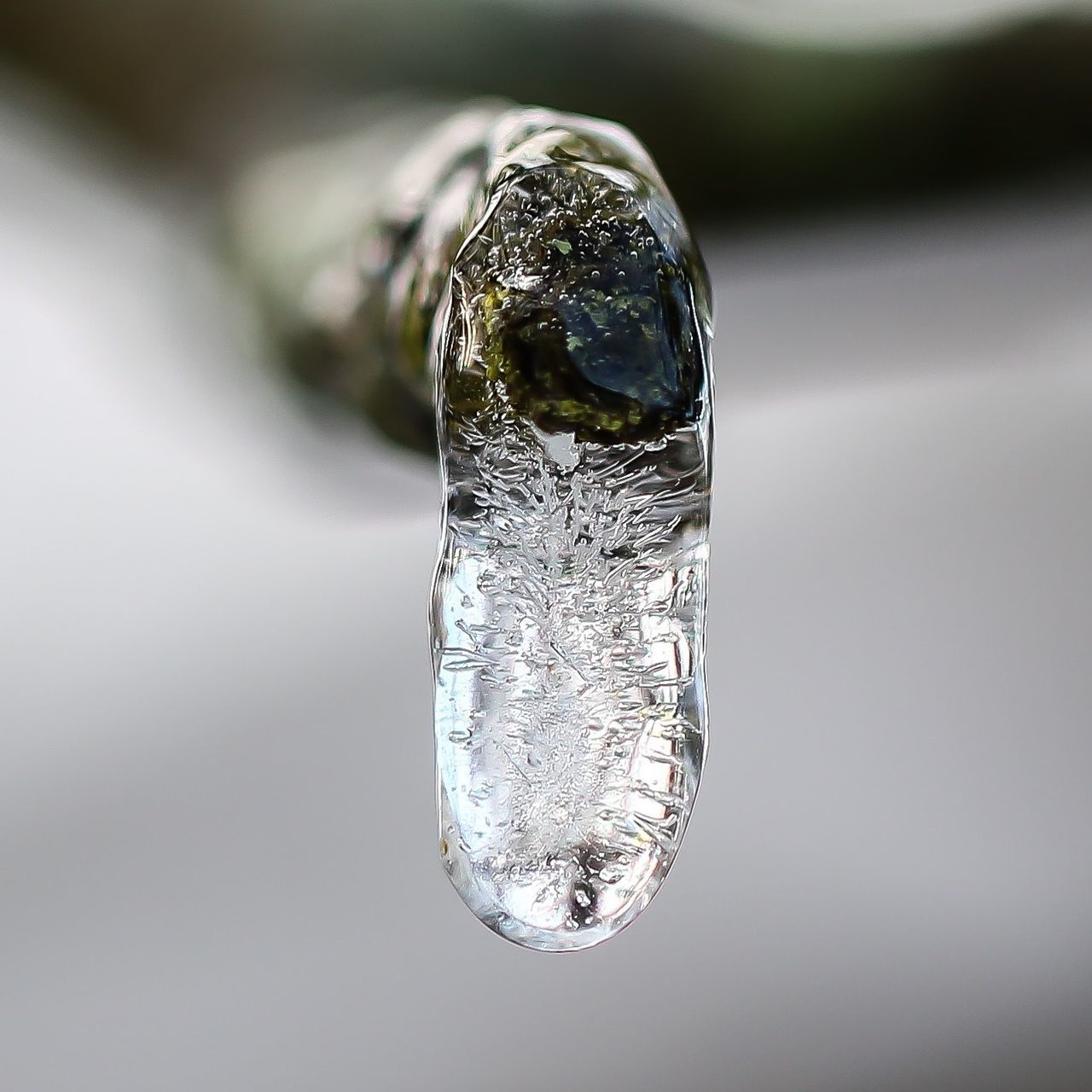 water, close-up, no people, purity, day, indoors, freshness, nature, refraction